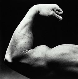 Бицепс: Сгибания рук со штангой стоя